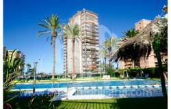 Apartment - Sale - A-ALICANTE CAPITAL - SAN JUAN PLAYA