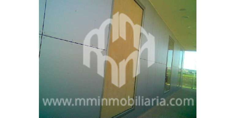 Sale - Premises - San Fulgencio