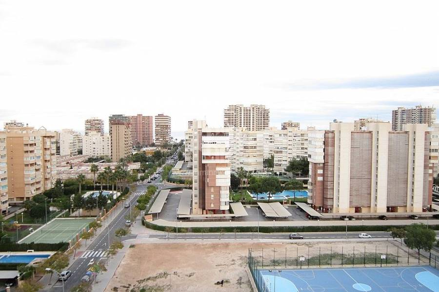 Sale - Penthouse - COSTA BLANCA NORTE - ALICANTE CAPITAL - SAN JUAN PLAYA-GOLF ALICANTE