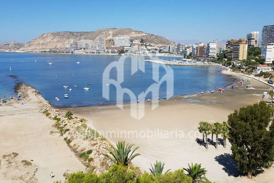 Rental - Apartment - COSTA BLANCA NORTE - ALICANTE CAPITAL - SAN JUAN PLAYA-CABO HUERTAS